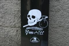skullskates2000_005
